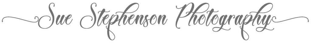 Sue Stephenson Photography logo