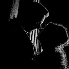 silhouette alnwick treehouse